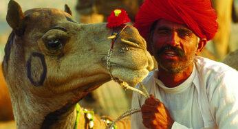 Royal Rajasthan – 8 Nights – 9 Days